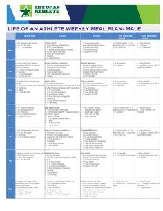 best life long diet plan for men