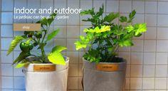 Garden Shop, Garden Pots, Planter Pots, Indoor, Canning, Collection, Interior, Garden Planters, Home Canning