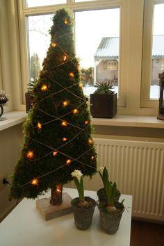 Kerstboom van mos White Christmas, Christmas Time, Christmas Ideas, Merry Christmas, Holiday Decor, Home Decor, Projects, Balcony, Christmas