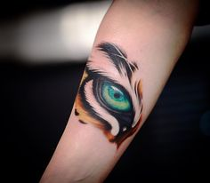 colorful eye of tiger tattoo design on forearm by @robgreennyc
