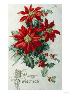 Vintage Christmas and Holly Vintage Christmas Images, Victorian Christmas, Retro Christmas, Vintage Holiday, Christmas Pictures, Christmas Poinsettia, Christmas Flowers, Christmas Decorations, Winter Flowers