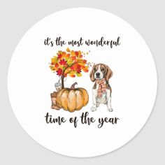 Its the most wonderful time of the year Beagle Classic Round Sticker corgi puppy cutest, baby dogs puppy, pug beagle mix #husky #dogs #cat, back to school, aesthetic wallpaper, y2k fashion Pug Beagle Mix, Corgi, Cute Puppies, Dogs And Puppies, Time Of The Year, Baby Dogs, Round Stickers, Aesthetic Wallpapers, Wonderful Time