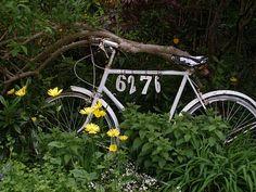 bike house numbers