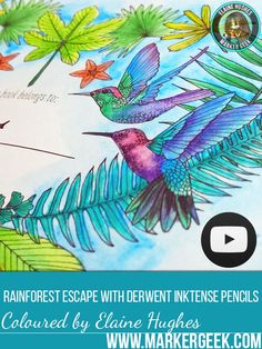 Rainforest Escape Colouring Book by Jade Gedeon. Click through for a review, flip through and colouring video!