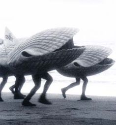 Once upon a time, in days past, when I would google search 'CLAMS' in order to arrive at my library web site [Cape Libraries Automated Materials Sharing] this is the first picture that would appear under 'image search?' I do not know where this image comes from (the blog entry accompanying it is vague) but I love it.        THE RUNNING OF THE CLAMS!