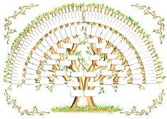 Blank Family Tree Chart Best Of 5 Generation Family Tree Template Tree Gallery Family Tree Poster, Family Tree Art, Genealogy Chart, Family Genealogy, Genealogy Websites, Blank Family Tree Template, Family Tree Designs, Tree Diagram, Tree Templates