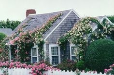 Seaside cottages. mj--This one because it is by the ocean and I love the roses going up the roof.