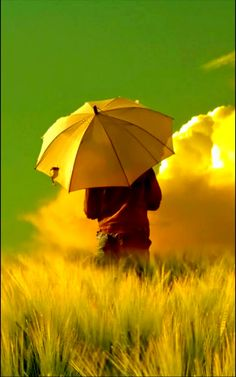 ** Green & Yellow