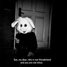 alice in wonderland quotes | Tumblr