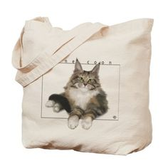 It's a fluffy Maine Coon kitty! - Gift Ideas For Cat Lovers (CafePress.com)