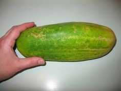 How to save cucumber seeds so I don't have to buy them from year to year.