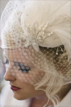 "This vintage bird cage veil went perfect with Jennifer's ""Circus Themed"" wedding. Parker J Photography."