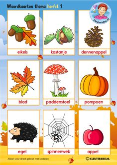 Word cards 1 for toddlers, autumn theme, teacher Petra van kleuteridee, free pre . Dinosaurs Preschool, Free Preschool, Preschool Crafts, Back To School Clipart, Back To School Art, Autumn Crafts, Fall Crafts For Kids, Back To School Bullet Journal, Learn Dutch