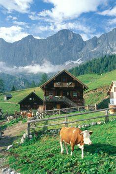 Anreise, Handy-Empfang, Kosten: 9 Tipps für den perfekten Alm-Urlaub - TRAVELBOOK.de