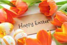 яйца, тюльпаны, Праздник, цветы, пасха