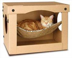 cat house (6)