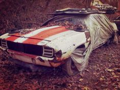 Rest in peace. Rest in Spaghetti, never forgetti. You're in a better place now. Abandoned Cars, Abandoned Vehicles, Abandoned Places, Junkyard Cars, Automobile, Car Barn, Rust In Peace, Roadster, Rusty Cars