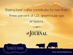 Raising beef cattle contributes to less than 3% of US greenhouse gas emissions.
