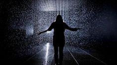 lower res 14. Rain Room Installation images © Felix Clay. Rain Room - Random International 2012. Courtesy of Barbican Art Gallery.jpg