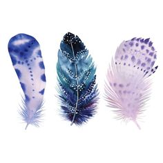 Feathers-Art-Print-Pastel-Web.jpg (500×500)