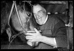 Calutu:) Romania, Horses, Animals, Art, Art Background, Animales, Animaux, Kunst, Animal