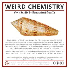 This week's cone snails and weaponised insulin! Chemistry Teacher, Science Chemistry, Science Geek, Science Facts, Food Science, Organic Chemistry, Science Lessons, Science Activities, Science And Nature
