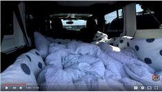 Jeep camping #goals