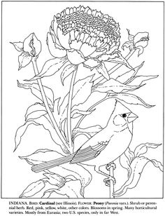 Scenic Coloring Pages Coloring Pages Animal