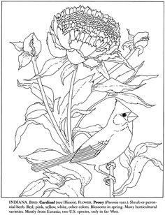 Roseate Spoonbill coloring page PRESCHOOL Pink