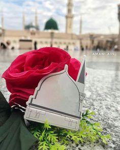 Muhammad mustafa S.