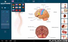 NATOM VIEWER  Android App - playslack.com , NATOM VIEWER is an application intended for the therapeutic education of patients and to be used as a tool in the patient healthcare professional relationship. Have at hand at all times a bank of images of high artistic and scientific quality to help with the communication of medical information. An essential tool for explaining, sharing, discovering and understanding a disease or a medical procedure. The functionalities of the NATOM VIEWER are…