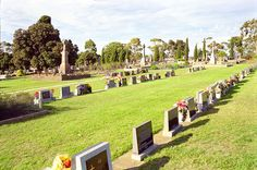 Drysdale / Bellarine cemetery: online at Geelong Cemeteries Trust http://www.gct.net.au/