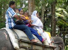 Zibaldone #Kerala #India