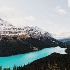 I like the mountain. Always still, but when it moves, lands shift and earth quakes. - J. Cook #getoutdoors #upknorth Glacial blue waters of Peyto Lake. Perfect shot by @josh_ross_