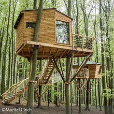 ==Baumhäuser haben etwas Magisches: Man schläft direkt in der Natur, ist den Baumkronen ganz nahe und hört den Wind in den Wipfeln rauschen. In Witzenhausen…