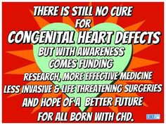 CHD Awareness is critical to funding and continuing much-needed research. 1 in 100 babies are born with a congenital heart defect.  That's over 40,000 babies EACH YEAR.