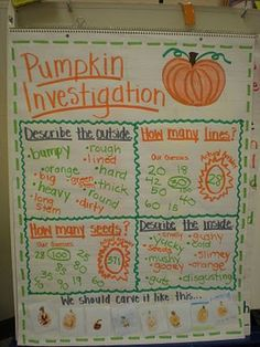 Pumpkin investigation-this will be better than the students writing their predictions on post-its since it's k4 this year! :)