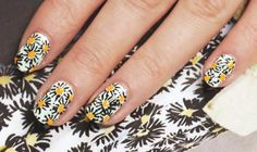 Spring - Art Deco Daisy