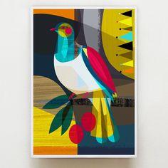 Wood Pigeon, Pigeon Bird, How To Draw Wood, New Zealand Art, Bird Illustration, Wildlife Art, Bird Prints, Drawing For Kids, Large Art