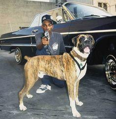 snoop dogg dog doggy flex rap hop hip 2pac artists southern dapper thug crips grapes hustlas hoovers