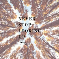 Never stop looking up. #positivitynote