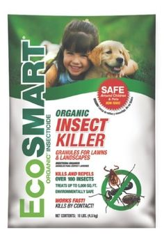 Tired of spending tons of time battling houseplant pests? Try neem oil as organic pest control, it works wonders to kill those nasty houseplant pests. Slugs In Garden, Garden Pests, Organic Insecticide, Organic Pesticides, Japanese Beetles, Container Gardening Vegetables, Vegetable Gardening, Neem Oil, Organic Gardening Tips