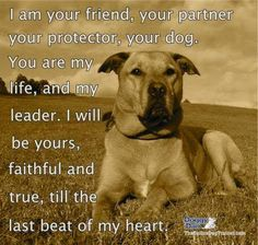 I am your FRIEND, your PROTECTOR, your dog. You are my LEADER. I will be yours, FAITHFUL and TRUE, til the LAST beat of my HEART.