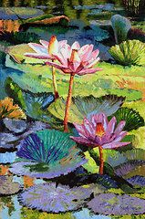 Water Lily Featured Images - A Moment In Sunlight by John Lautermilch