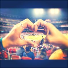 StL Cardinals baseball <3  Can't wait to go to a game again! Were doing this too!! It's so cute and shows our love for each other and the birdies!!! <3