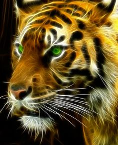 digital abstract tiger