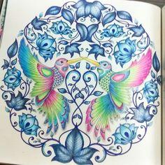 #secretgarden #jardimsecreto #livro de colorir do meu livro de colorir, jardim secreto. Amei esses beija flores