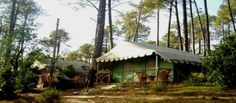 Tree House in Pine Forest in Shimla >>>  he camp is located at an altitude of 2050 mtrs, about 5 Kms west of #Shimla. The Camp Site covers 100 Hectares of prime Western #Himalayan Forests of #Himachal.  #camping #treks #trekking #Shimla