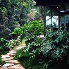 Integração tropical ! Foto by @renatoelkis @renatoelkis_galeria @elkispaisagismo @palimanan_revestimentos #landscape #landscapedesign #landscapearchitecture #garden #gardening #plants #flowers #green #nature #paisagismo #paisagista #jardim #plantas #flores #verde #natureza #jardi #palimanan #palimanan_revestimentos #design #decor #architecture #arquitetura #gilbertoelkis #elkis #elkispaisagismo @mollofurniture