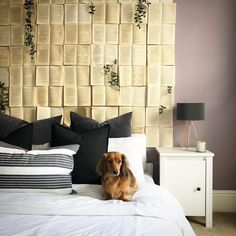 She's Darling Headboard Inspo Handsome, Curtains, Small Houses, Decor Ideas, Dog, Home Decor, Little Houses, Diy Dog, Blinds